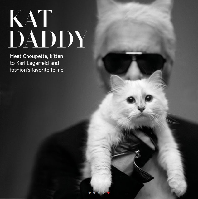choupette_cat_karl_Lagerfeld_for_riachuelo_glam_style